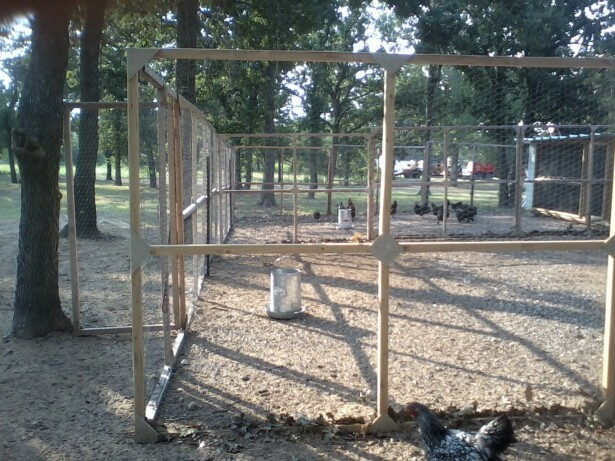 Chicken runs panels for Homemade chicken coops for sale