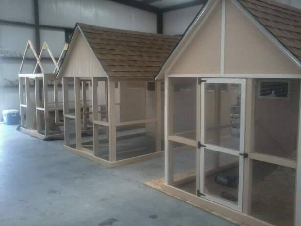 Texas chicken coops for Fancy chicken coops for sale